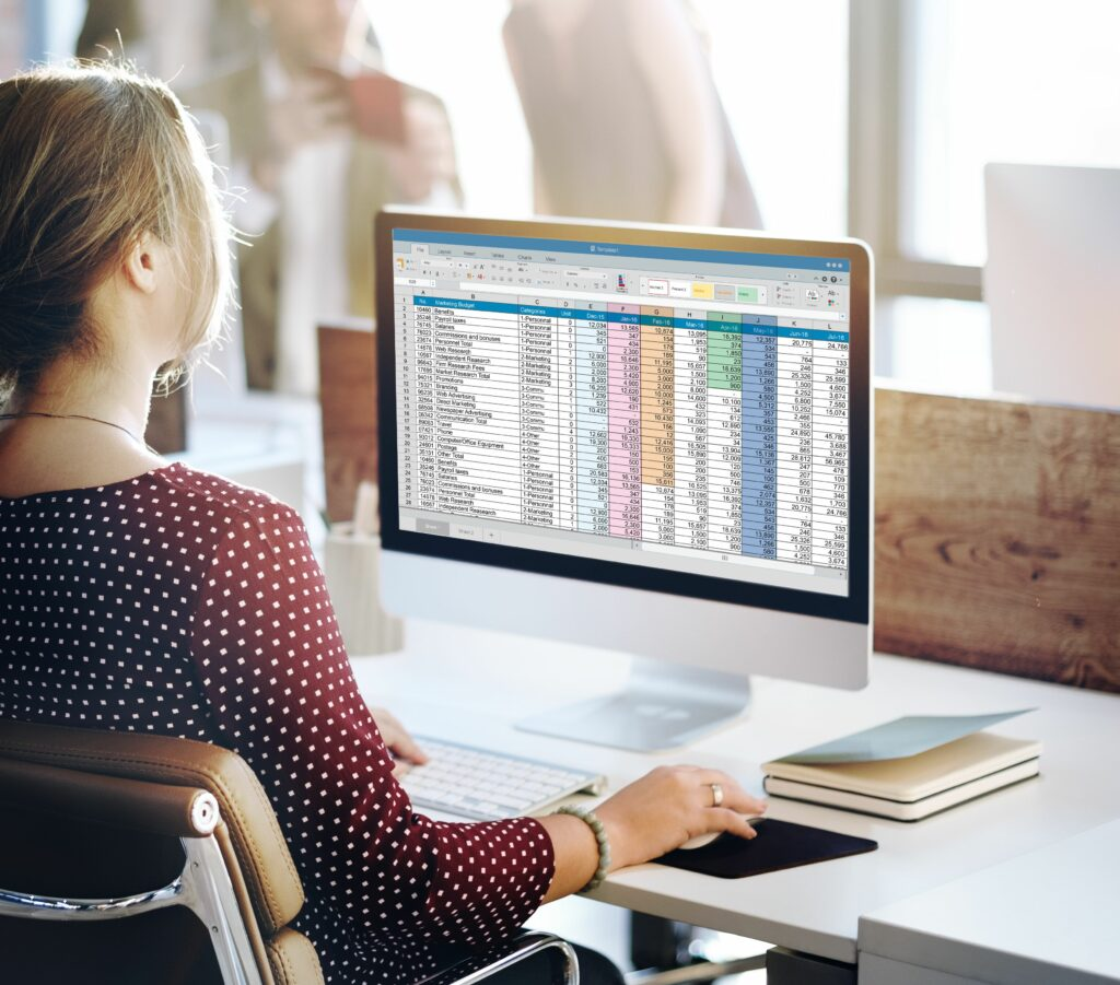 Image of a young white female working on a spreadsheet on a computer.